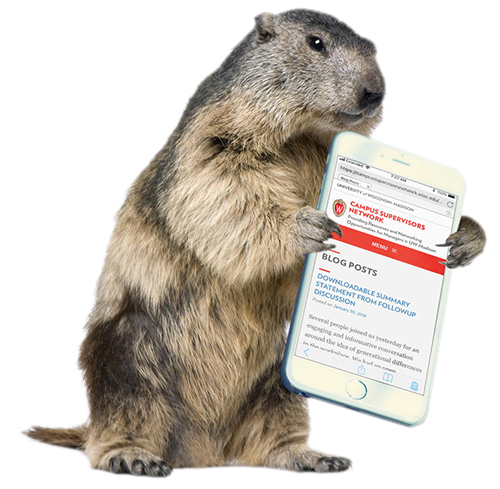 groundhog with phone in hand showing CSN website